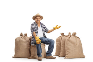 Mature farmer sitting on burlap sacks and gesturing with his hand isolated on white background